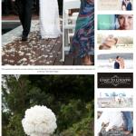Brides Tree - Sunshine Coast 1