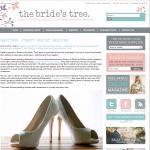 Brides Tree - Sunshine Coast