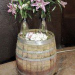 Shadowfax Winery wedding location